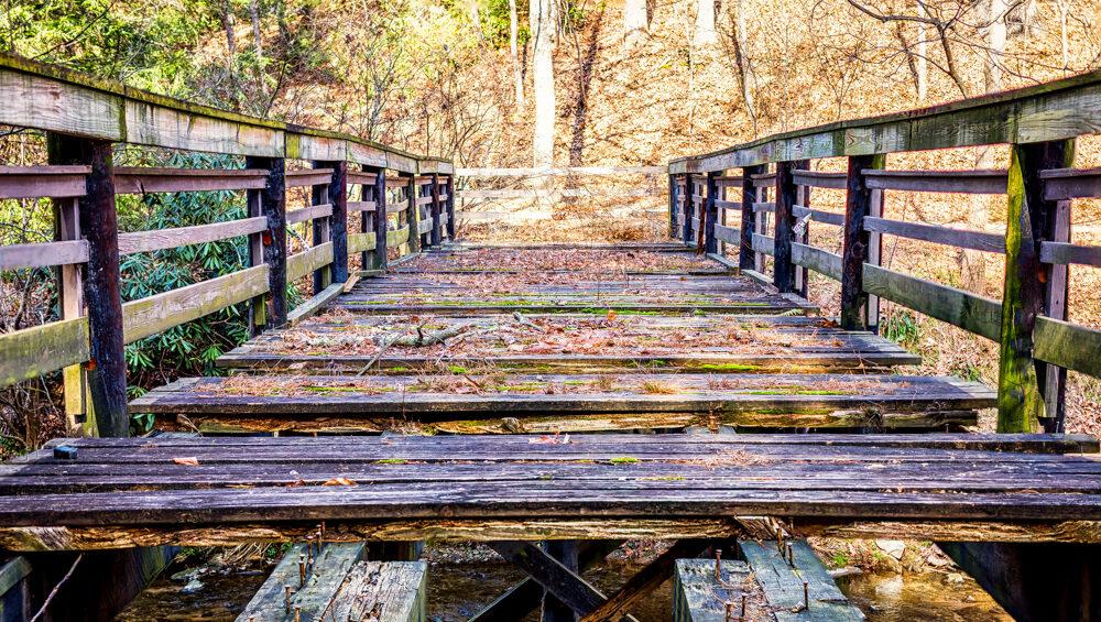 asheville botanical gardens unfinished bridge